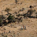 Begehung des Hügels im Surveyzeitraum 2006-2012